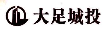 重庆大足城乡建设投资集团有限公司