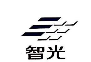 广东智光用电投资有限公司