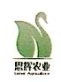 福安市恒跃种植专业合作社