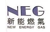 平果县新能燃气有限责任公司 最新采购和商业信息