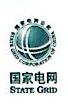上海网电投资发展有限公司
