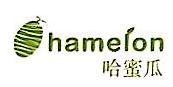 武汉哈蜜瓜科技有限公司
