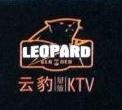 上海云豹娱乐发展有限公司 最新采购和商业信息