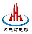 东阳市极光电子有限公司 最新采购和商业信息