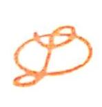 山东德隆装饰有限公司 最新采购和商业信息