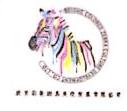北京彩色斑马文化发展有限公司 最新采购和商业信息