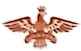 中山市冠鹏商贸有限公司 最新采购和商业信息
