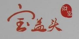 上海宝盖头企业发展有限公司 最新采购和商业信息