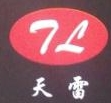 深圳市天雷电子有限公司