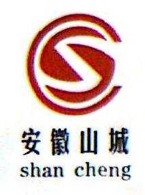 安徽长银矿业有限公司