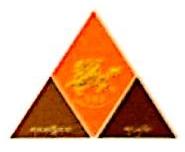 西藏大宇矿业开发有限公司 最新采购和商业信息