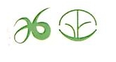 龙游正一皇化学工业有限公司 最新采购和商业信息