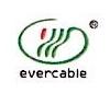 深圳市易恒通电线电缆有限公司 最新采购和商业信息