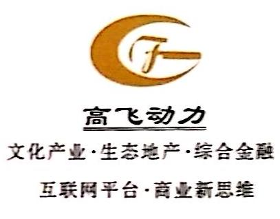 九江高飞动力文化发展有限公司 最新采购和商业信息