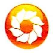 福建省福龄金太阳健康养老股份有限公司