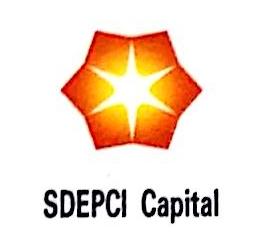 山东鲁电能源发展有限公司 最新采购和商业信息