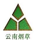 云南烟草兴云投资股份有限公司