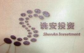 上海诜安投资咨询有限公司