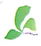 广西南宁剑凯环保科技有限公司 最新采购和商业信息