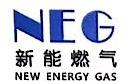 广西新能能源股份有限公司