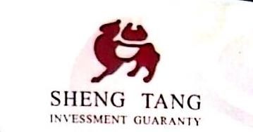 武汉盛唐投资担保有限公司 最新采购和商业信息