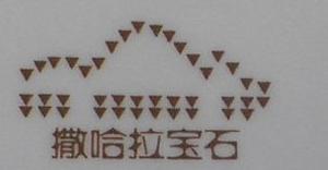 深圳市撒哈拉宝石有限公司 最新采购和商业信息