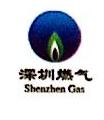 定远县深燃天然气有限公司