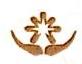 深圳前海光彩资本管理有限公司 最新采购和商业信息