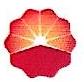 吉林市华康化工有限公司 最新采购和商业信息