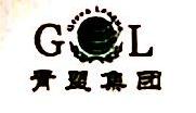 青盟投资顾问(北京)有限公司