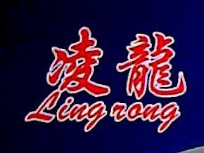 金华凌龙科技发展有限公司 最新采购和商业信息