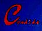 成都市康帝达物资贸易有限公司 最新采购和商业信息