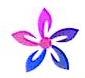 东莞市五朵花服饰有限公司 最新采购和商业信息