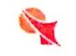 沈阳新角度广告有限公司 最新采购和商业信息