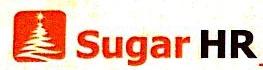 上海圣德人力资源管理有限公司 最新采购和商业信息