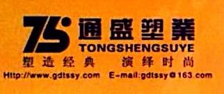 深圳市通盛辉科技有限公司 最新采购和商业信息