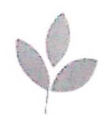 锦州腾兴服装服饰有限公司 最新采购和商业信息