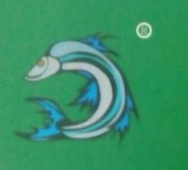 深圳市翘娃鱼供应链有限公司 最新采购和商业信息