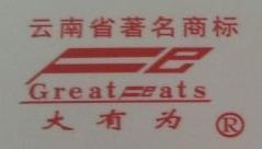 景谷傣族彝族自治县大有为食品有限公司