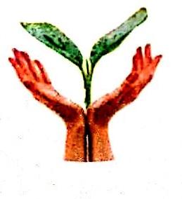 温州绿优农副产品有限公司 最新采购和商业信息
