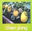 上海申疆贸易有限公司 最新采购和商业信息