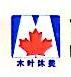 南京木叶沐美贸易有限公司 最新采购和商业信息
