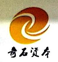 深圳奇石资本投资管理有限公司 最新采购和商业信息