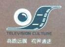 深圳大视界文化产业投资管理有限公司 最新采购和商业信息
