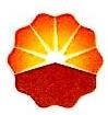 中国石油工程建设公司广东石化分公司 最新采购和商业信息