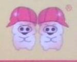 沈阳双胞胎饲料有限公司 最新采购和商业信息