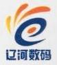 盘锦辽河数码科技发展有限公司