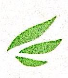 福建儒林投资管理有限公司 最新采购和商业信息