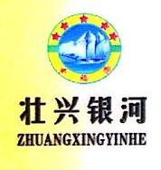 广西壮兴银河投资有限公司 最新采购和商业信息