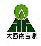 四川大西南宝鼎新能源有限公司